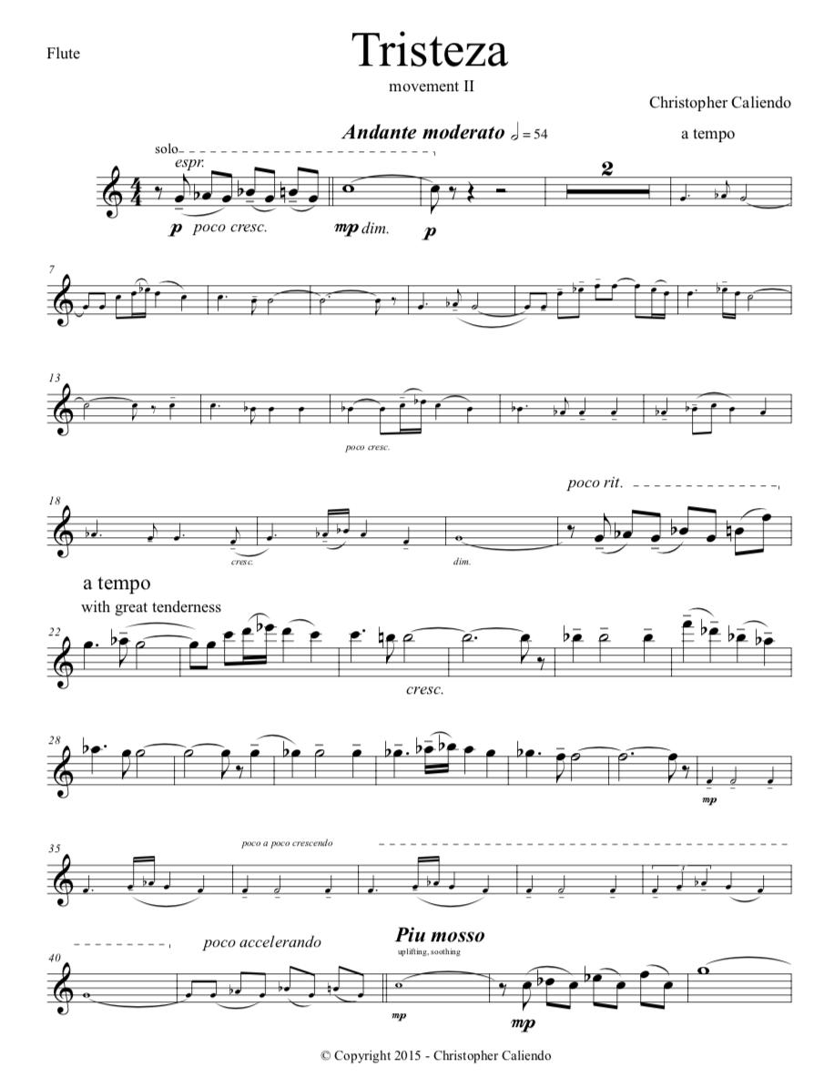 Tango Concerto No. 1 (Flute, Oboe, Piano)