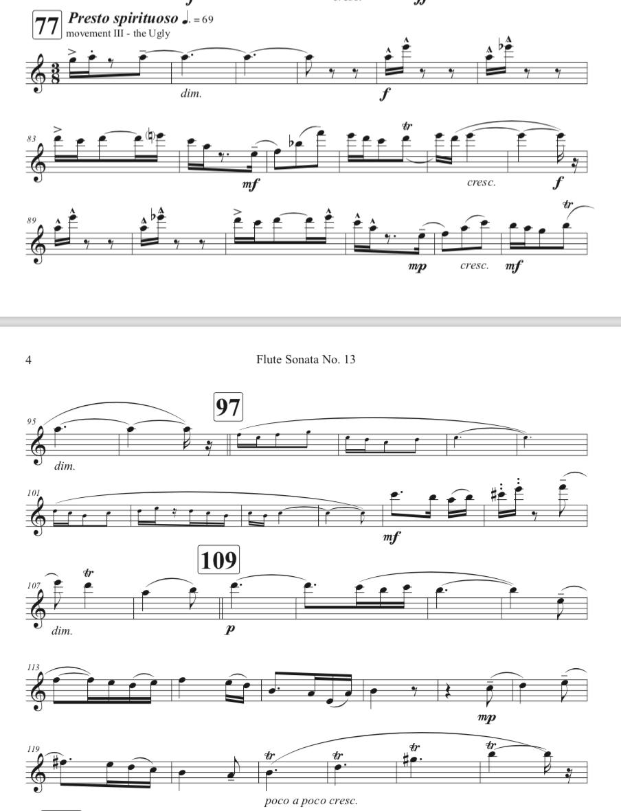 Flute Sonata No. 13